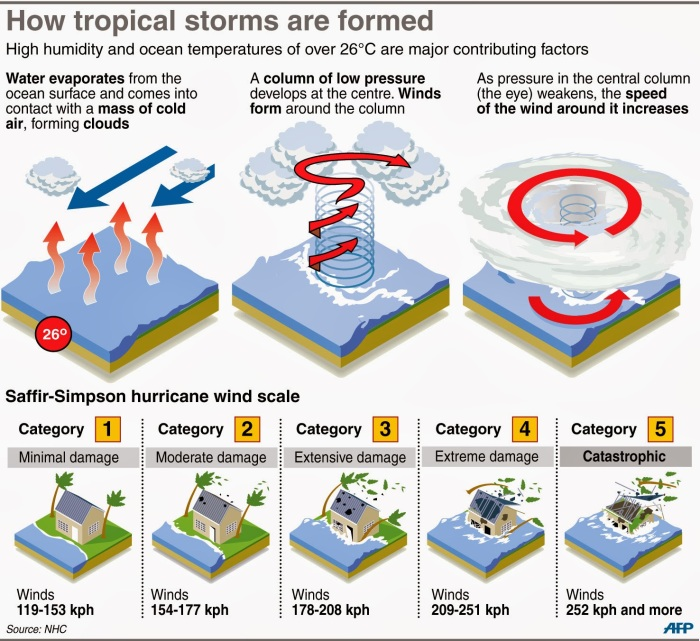 tropical storms infographic